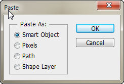 Paste your copied art from Illustrator into Photoshop
